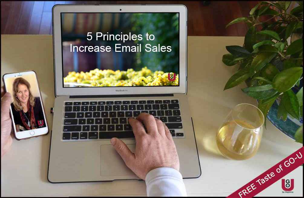 Laptop with 5 Principles to Increase Email Sales