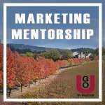 GO-U Online Marketing Training For Wine Businesses