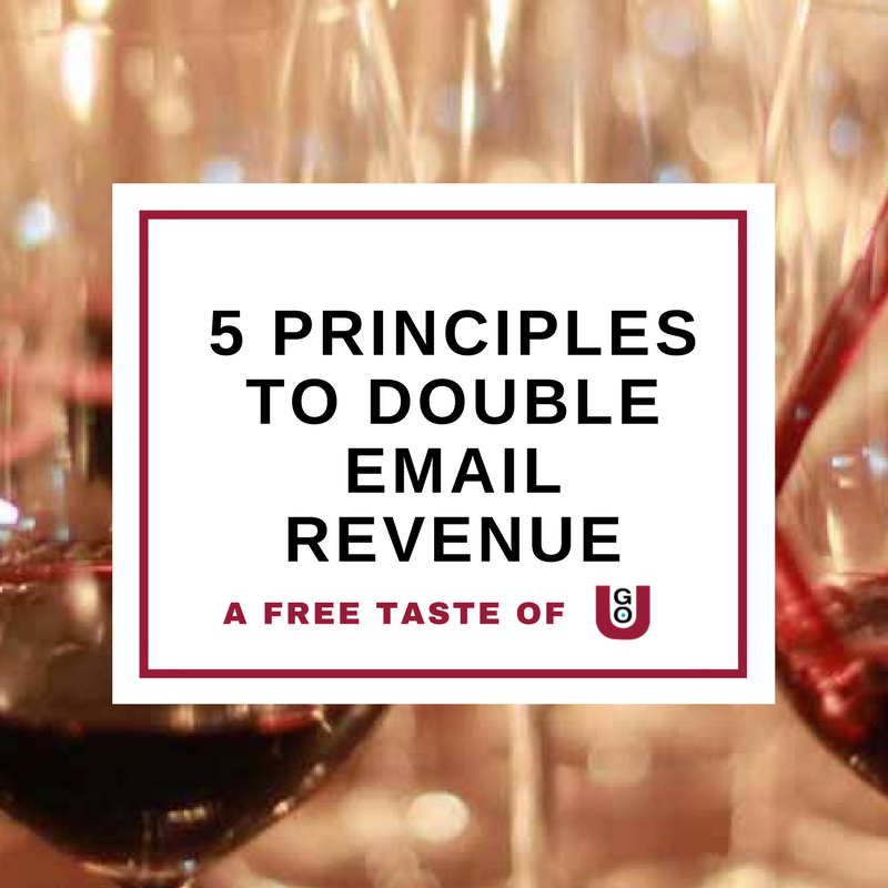 5 Principles To Double Email Revenue - A Taste Of Go-u From Digivino